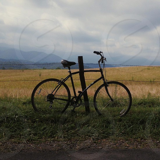 black bicycle on the grass photo