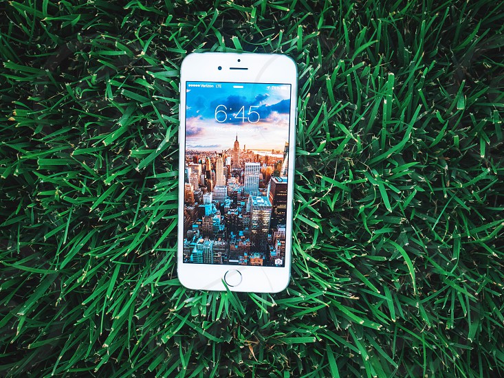 white apple iphone 5s on green grass photo