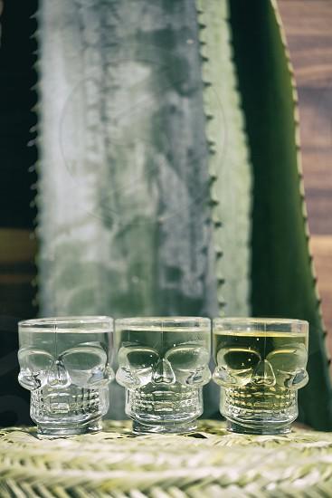 skull shot glasses photo