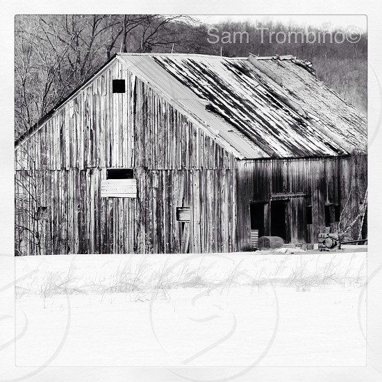 grayscale photography of wooden barn photo