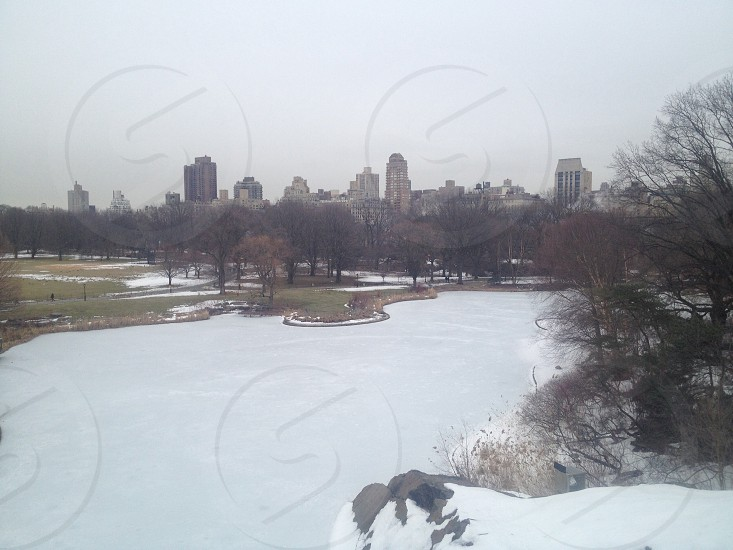 Central Park in the winter photo