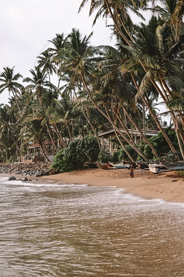 Explore beautiful Sri Lanka beaches and warm Indian Ocean photo
