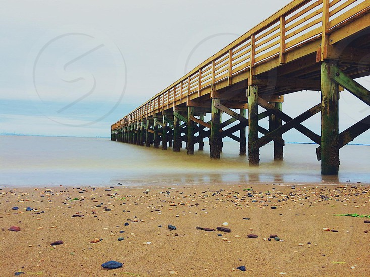 brown and green wooden dock on sea and beachside photo