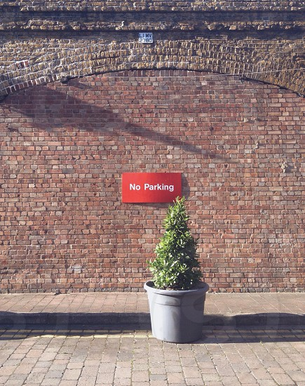 no parking sign on brick wall near plant photo