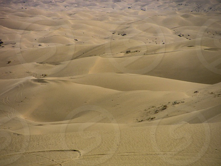 A wide expanse of wind blown sand dunes in the Imperial Sand Dunes Recreation Area in southern California part of Algodones Dunes photo