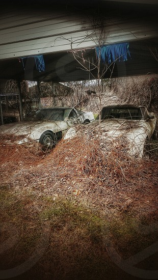 Corvette autos automobiles vintage vintage cars abandoned rural rustic automotive muscle cars vines overgrowth garage derelict photo