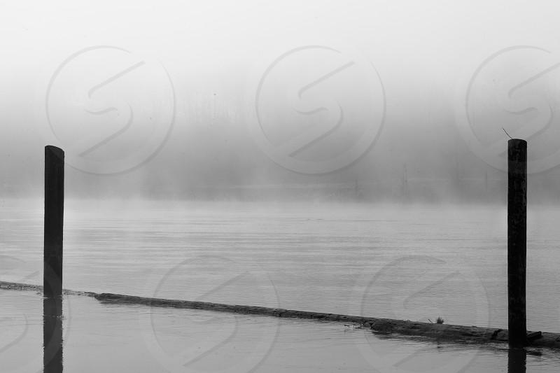 fog river wood dark dreary shadows lines photo
