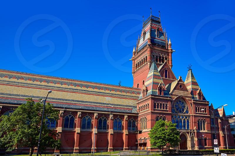 Harvard University historic building in Cambridge at Massachusetts USA photo