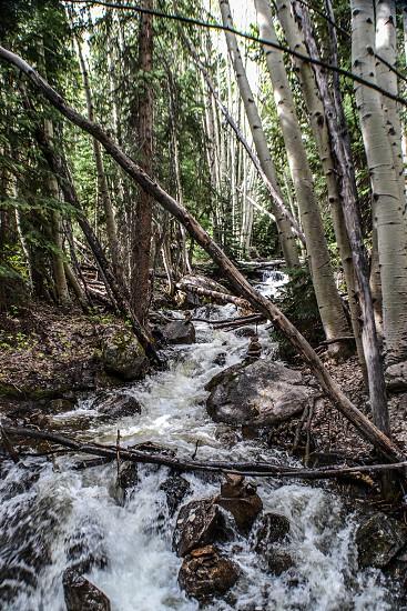 Hiking in Colorado photo