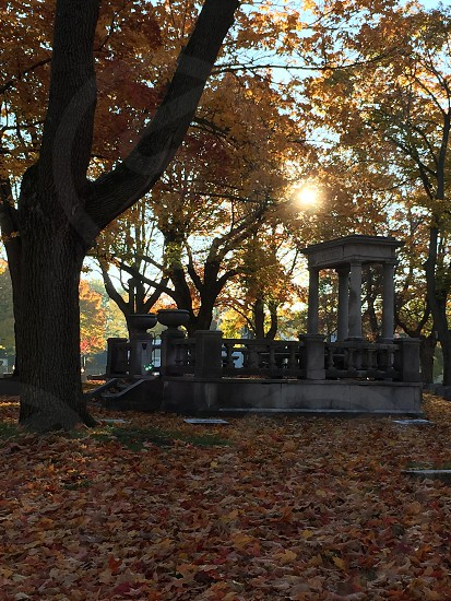 An eerie tomb in a leaf strewn graveyard photo