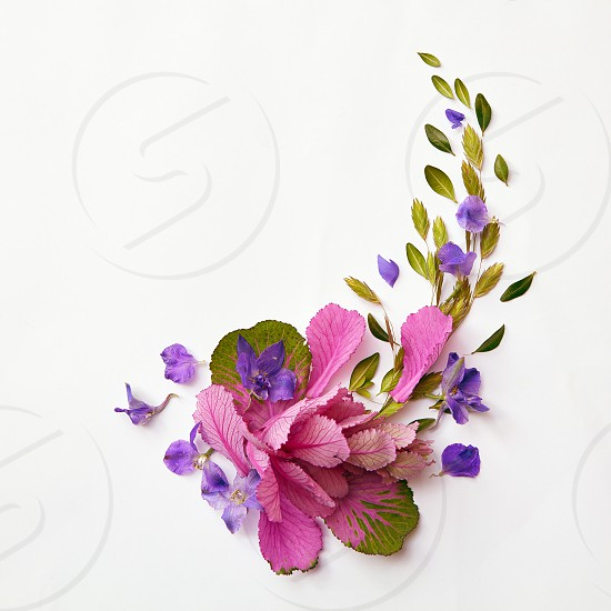 beautiful corner frame of delicate flowers on a light background with space for text flat lay photo