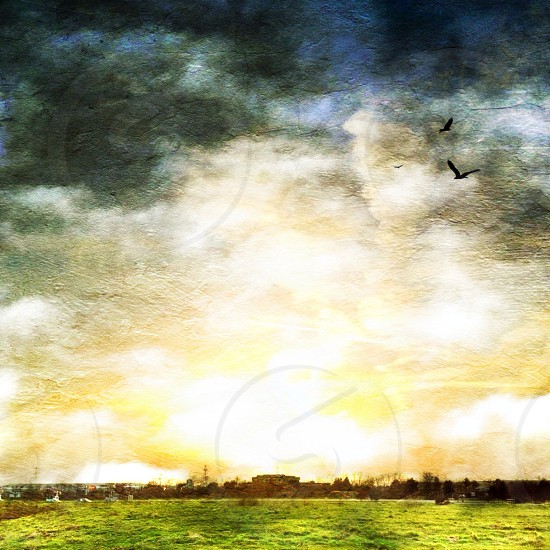 painting of a horizon photo