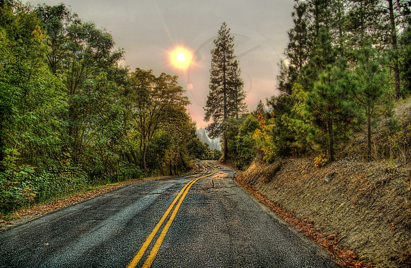 Winding road highway forest desert smokey sky fires orange sky journey photo