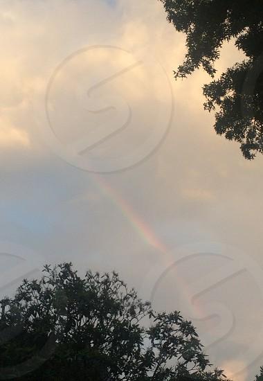 gloomy days rainbows photo