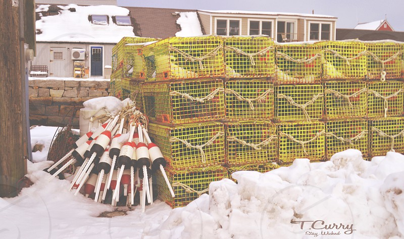 yellow cages on snow photo