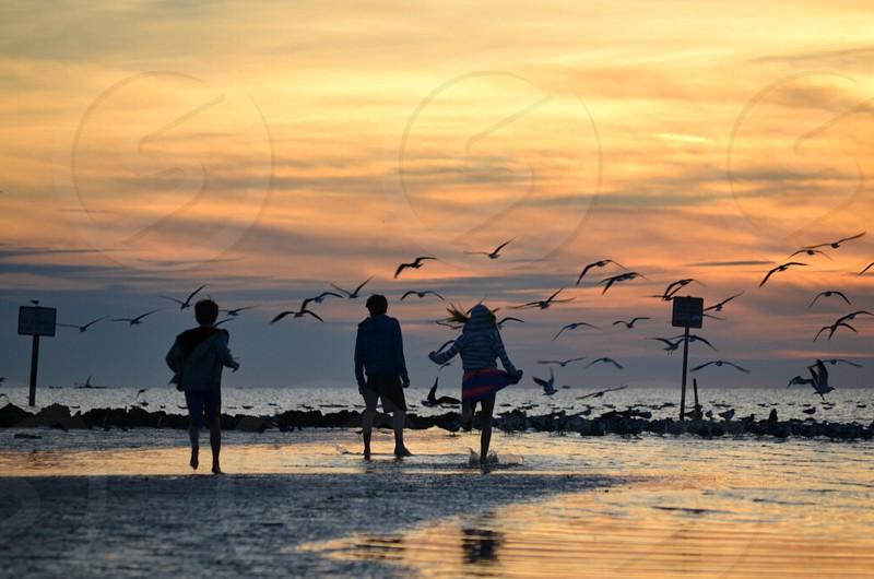 Sunset beach ocean relax fun birds waves kids siblings sister brother friendship  photo