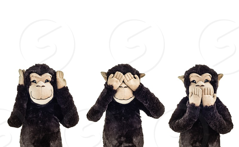 The three wise monkeys photo