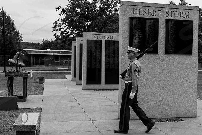 veteran standing gaurd on memorial day photo
