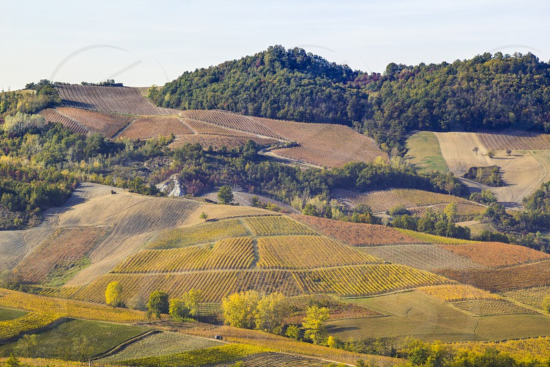The landscape of the hills of the Oltrepo Pavese you can see the hills where it is produced the wine of high quality Italian photo