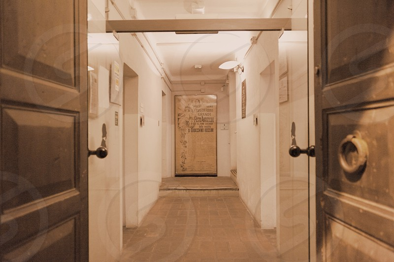 brown wooden door near pathway photo