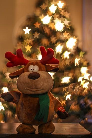 Christmas reindeer toy photo