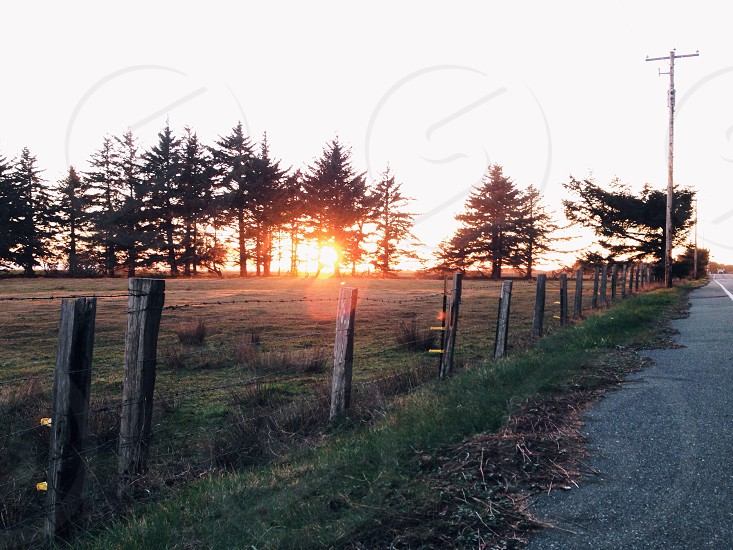 brown wooden fence over sunset photography photo
