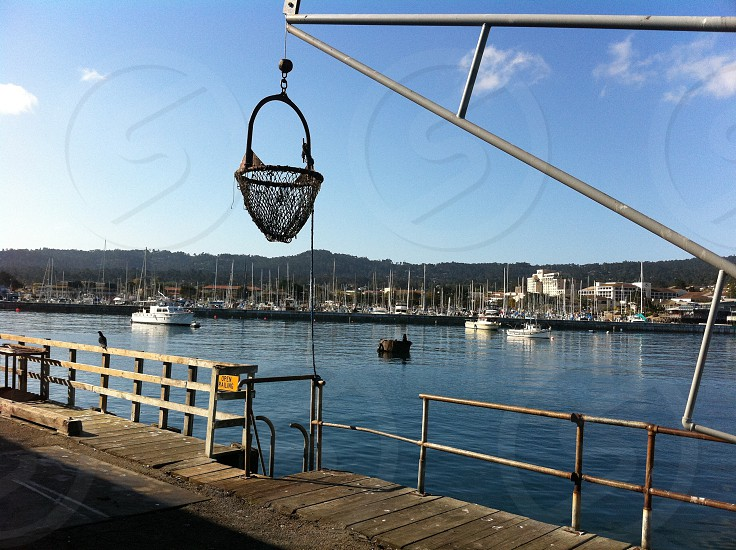 Wharf Monterey moored boats photo