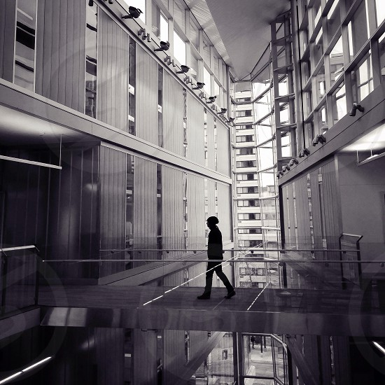 silver staircase  photo