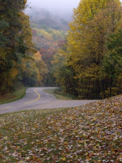 Blue Ridge Parkway winding road photo