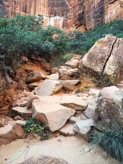 Zion national park hiking trail rocks outdoors utah photo
