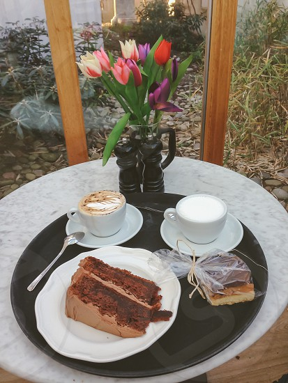 Coffee and cake white hot chocolate cappuccino chocolate cake millionaires shortbread tulips window garden photo