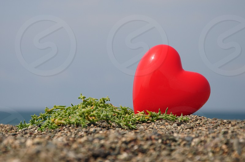 red heart designed photo