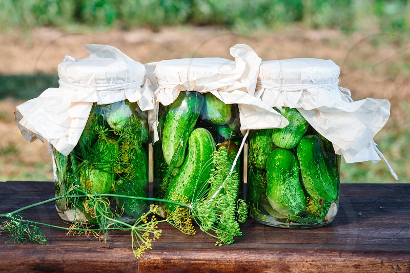 Pickled cucumbers made of home garden vegetables and herbs photo