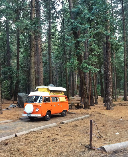 Camp life. Yosemite National Park. Volkswagon camping.  photo