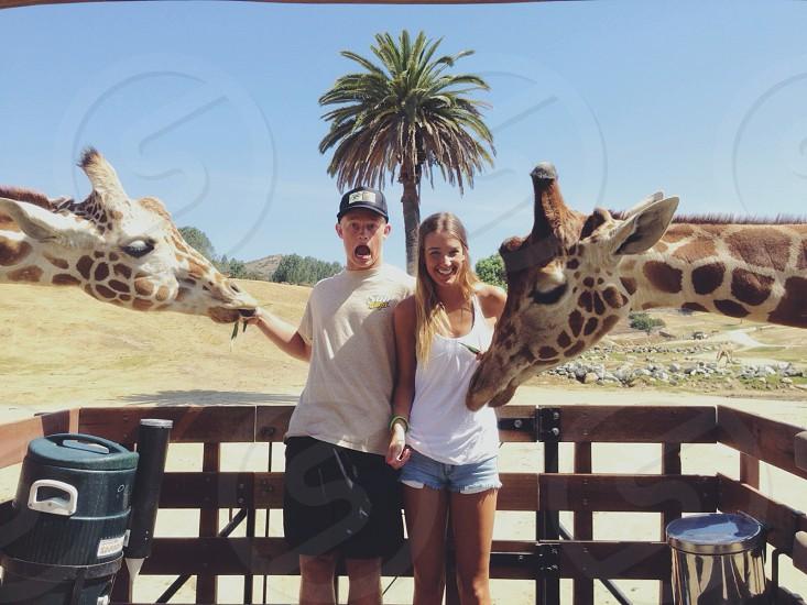 San Diego Wild Animal Park photo
