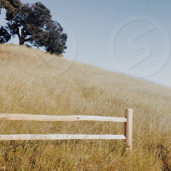 brown wooden fence on brown grass field photo
