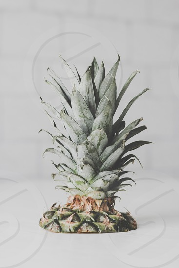 Fresh pineapple on table photo