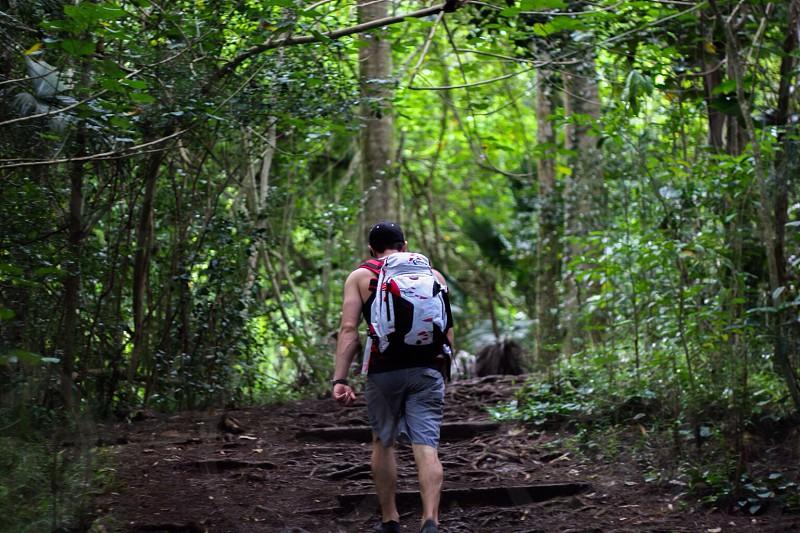 Hiking in Oahu Hawaii  photo