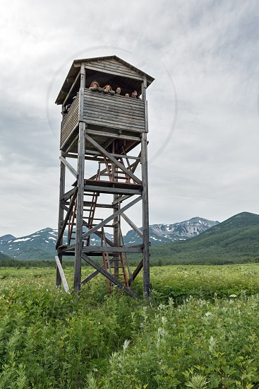 NALYCHEVO KAMCHATKA PENINSULA RUSSIA - JULY 12 2014: Observation tower of Kamchatka brown bears and wildlife in the Central cordon of nature park Nalychevo and group tourists on tower. Russian Federation Far East Kamchatka Peninsula. photo