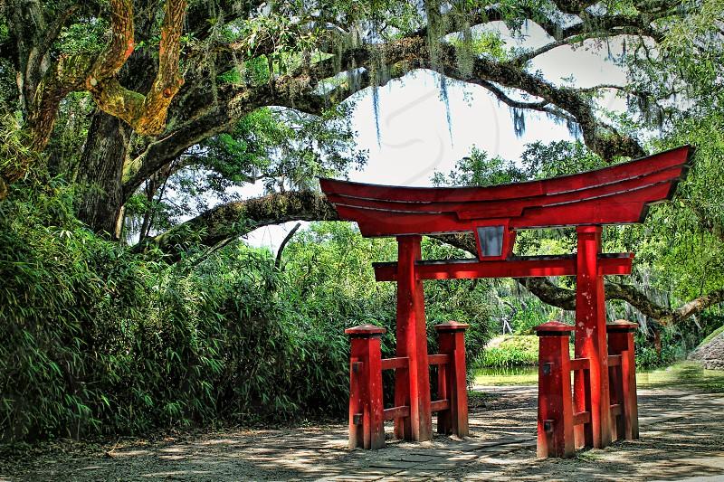 Japanese Torii gate in a nature park photo