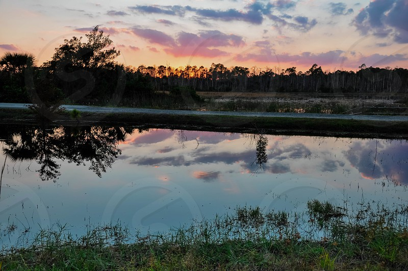 the day's end at Grassy Waters Florida photo