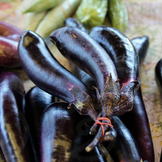 Eggplant at farmers market photo
