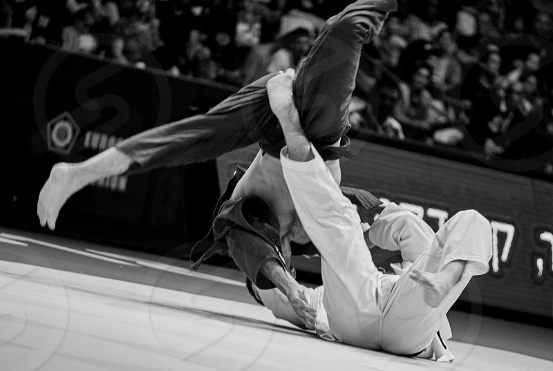 A few moments from European Championship Judo... photo