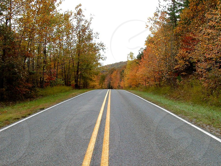 Two lane highway on country road in fall photo