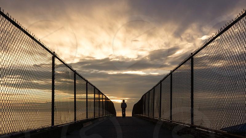 bridge view photo