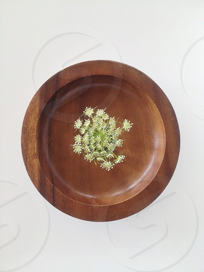 brown wooden plate photo