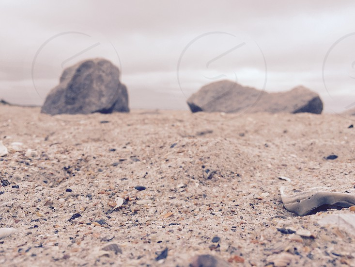 Beach sand rocks shells ocean zen peaceful photo