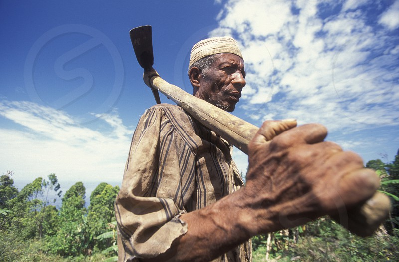 a worker in the city of Moutsamudu on the Island of Anjouan on the Comoros Ilands in the Indian Ocean in Africa.    photo