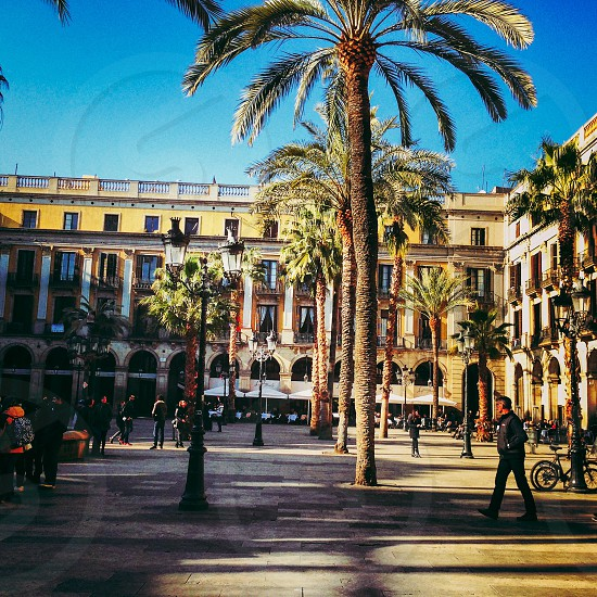 Barcelona architecture apartments square Spain palm trees  photo