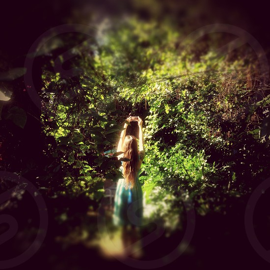 Lost in Wonderland taking pictures. photo